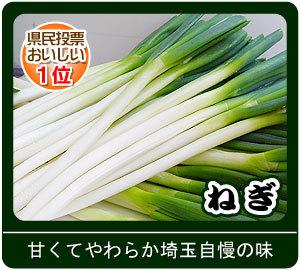 Naganegi