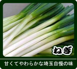 2012_01negi